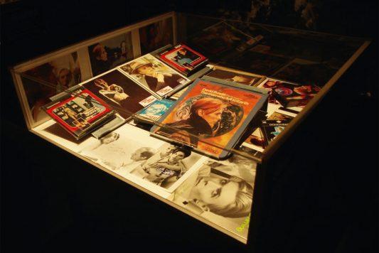 Expo Bowie sélection Ludo-45